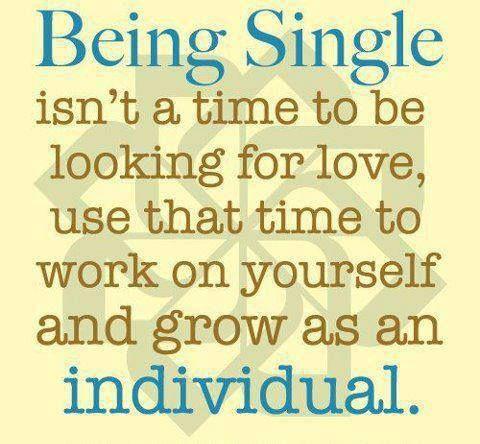 I Love My Single Life Quotes Nemetasaufgegabeltinfo