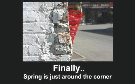 spring-quotes-funny-3.jpg (460×288) | out 2 lunch ...