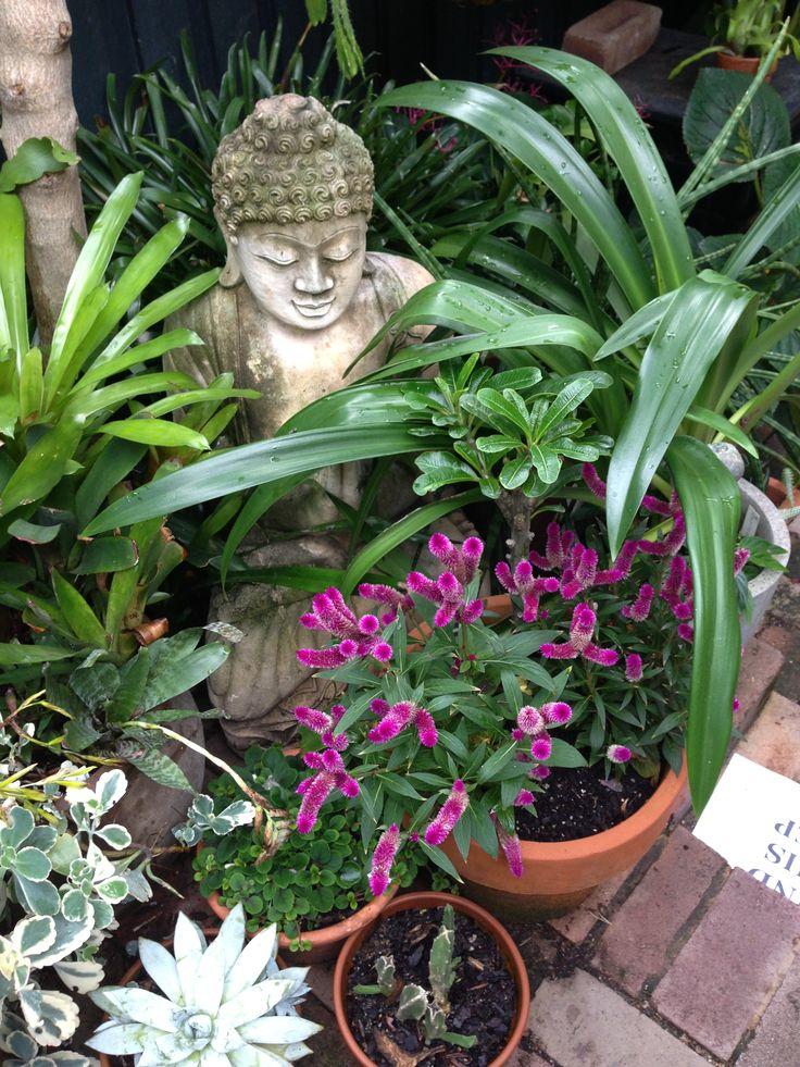 from an open garden - Open Garden Decor