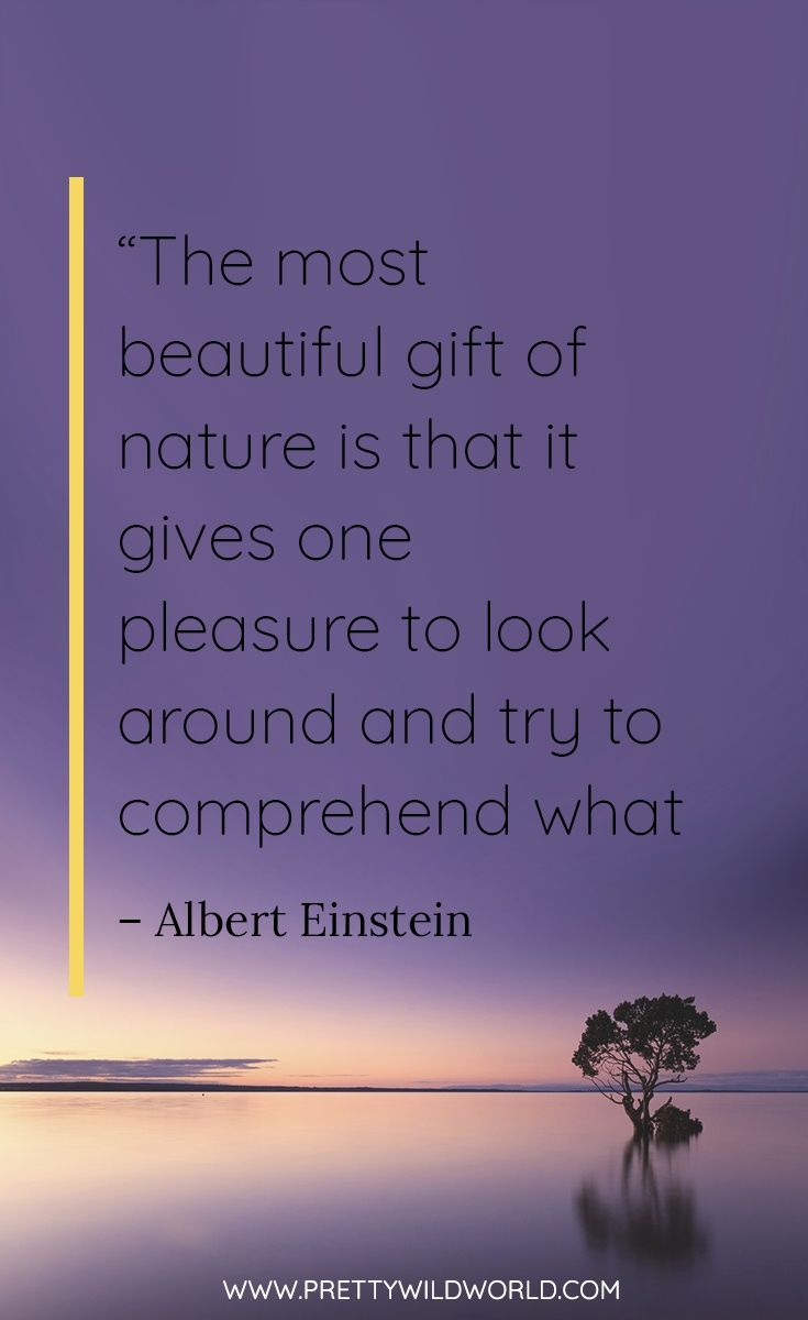 Best Nature Quotes Top 35 Quotes About Nature And Life Nature Quotes Short Travel Quotes Travel Quotes