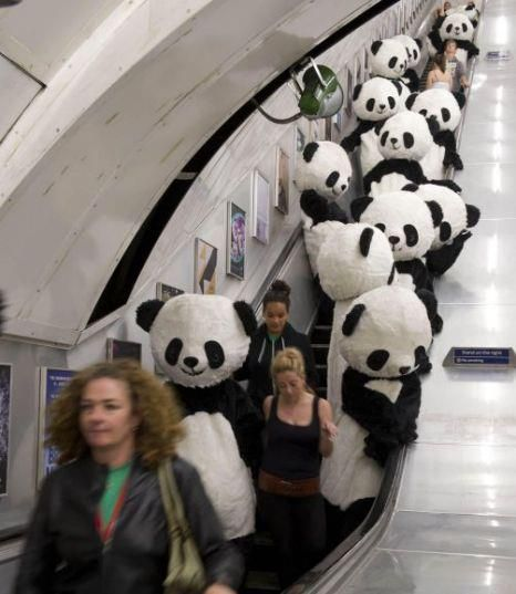 going fer a ride on the tube