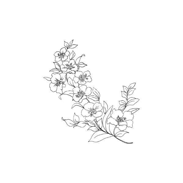 Vector image of Twig cherry blossoms vector, includes twig, beauty, blossom, background & japan. Illustrator (.ai), EPS, PDF and JPG image formats. 5843718