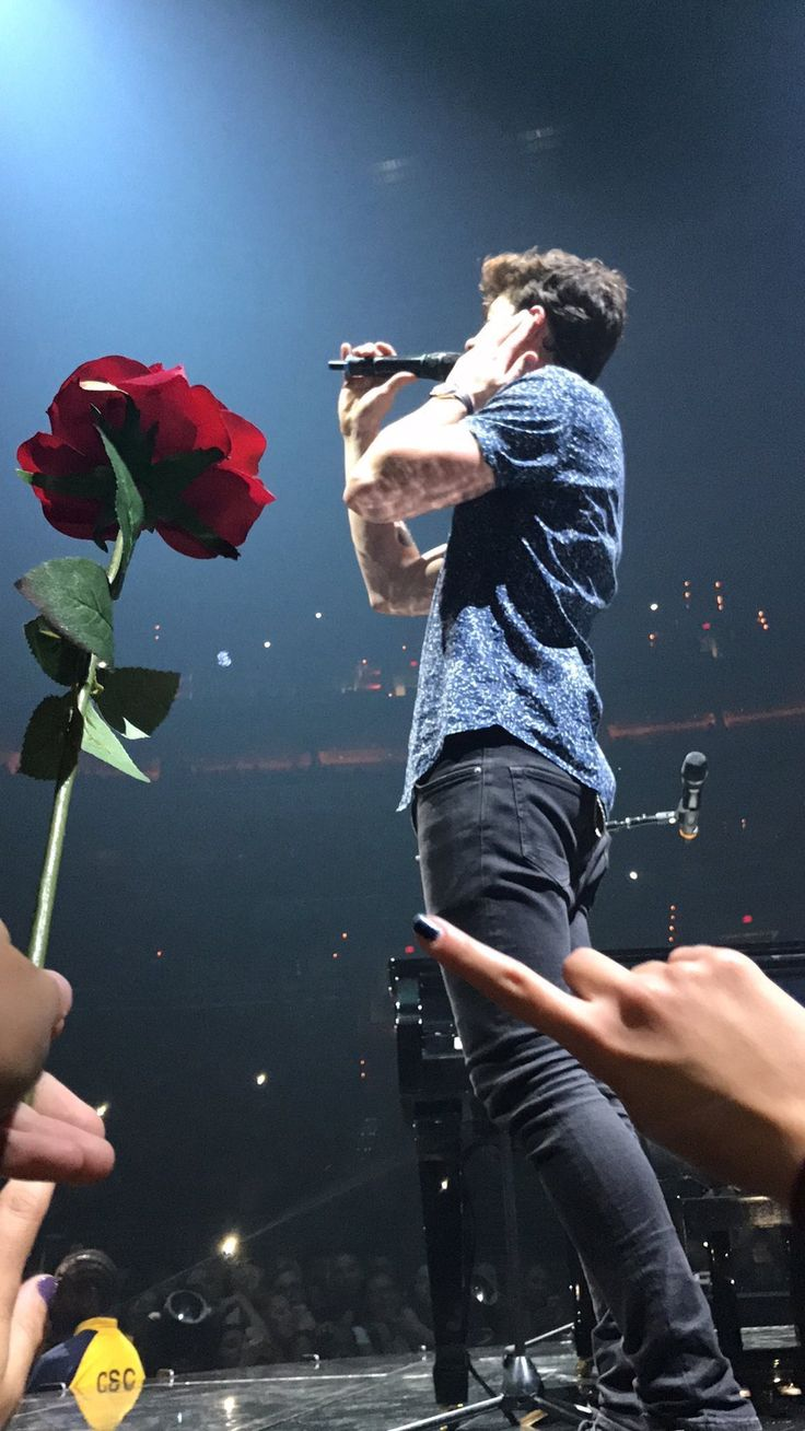 A million roses just for you!!