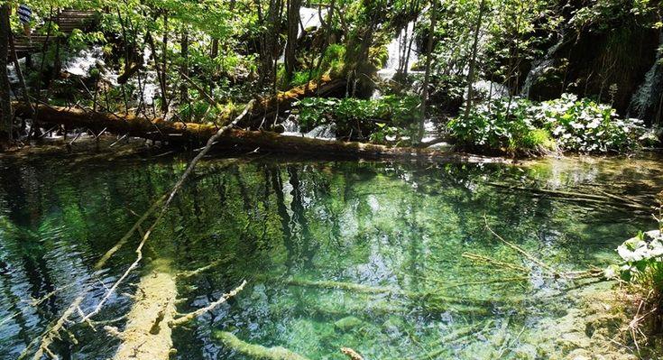 【クロアチア03】青と緑の美しいコントラスト。。世界遺産プリトヴィッツェ湖群国立公園