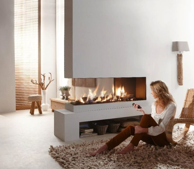 Contemporary dual aspect fireplace