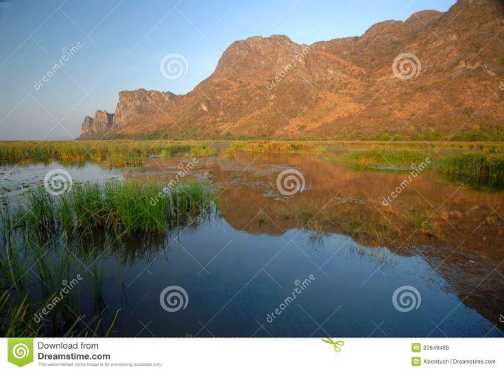Khao Sam Roi Yot National Park Animals | Swamps in Khao Sam Roi Yot National Park.Prachuap Khiri Khan Province ...