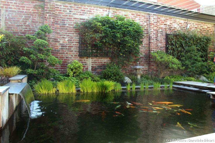 Bassin à carpes Koi