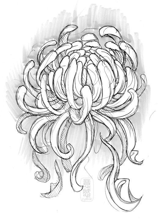 24hr sketch 263 by fydbac.deviantart.com on @deviantART