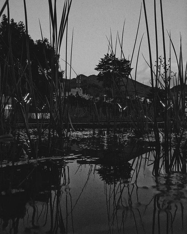 Come and I'll show you just if you want to see (and me seen). #bw #blackandwhitephoto #reflection #nature #urban #bogota #water #moments #friends #vsco #vscocam #botd #bestoftheday #life #future #wish