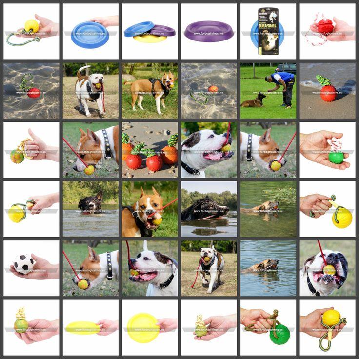 Juguetes para verano apropiados para perros pequeños y grandes, aptos para jugar con el perro al aire libre, en el campo, a la orilla del lago o en el agua. Pelotas flotantes, discos de frisbee, juguetes para cachorros y perros adultos. Ver https://fordogtrainers.es/index.php/juego  #juguetes_para_verano #juguetes_para_cachorros #pelotas_flotantes #discos_frisbee #disco_de_frisbee #juguetes_para_cachorros #juguetes_para_perros