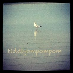 tiddlyompompom: Misic teacher, mother of one, doesn't live by the seaside