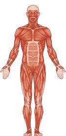 Artrose behandeling door ontzuren van het lichaam - Artrose klachten