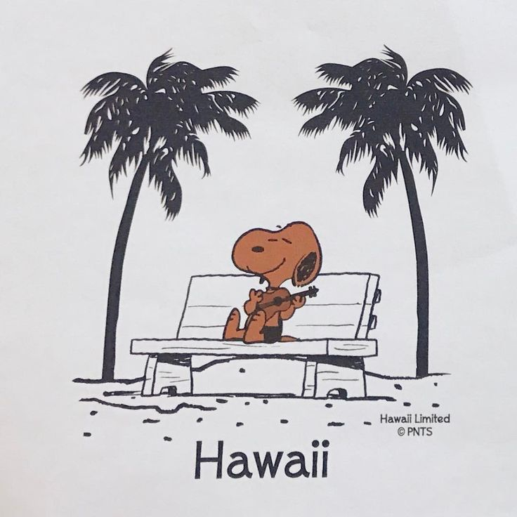 Oh yeah....Snoopy AND Hawaii!!