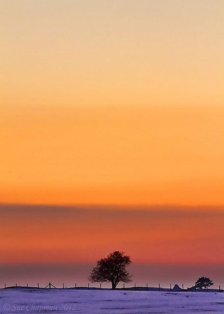 Lone tree 2 by Red Sue Chapman. If you know me, you know I have a thing for single trees in the middle of nowhere. I love this.