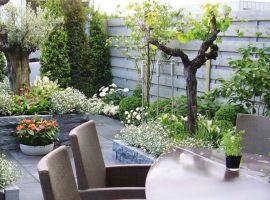 Tuinschermen - Assortiment - Klaasse Bos Tuinmaterialen voor al uw sierbestrating, natuursteen, tuinhout, blokhutten, tuinverlichting, kunstgras en meer...