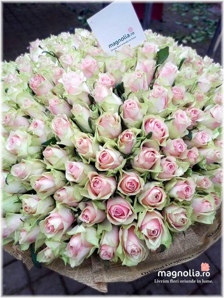 201 trandafiri; 201 pink rose bouquet!