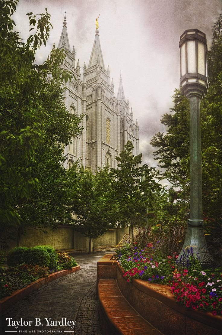 Taylor Yardley - Amazing Photos of the Temples