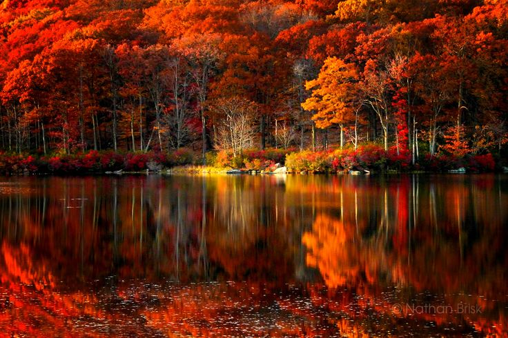 Autumn Reflections. Photography by Nathan Brisk, at Harriman State Park, in NY.