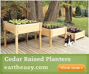 Like the height: Squares Planters, Outdoorgarden Ideas, Outdoor Herbs, Raised Gardens Beds, Mosquitoes Plants, Repellent Mosquitoes, Gardens Planters, Raised Planters, Mosquitoes Repellent Plants