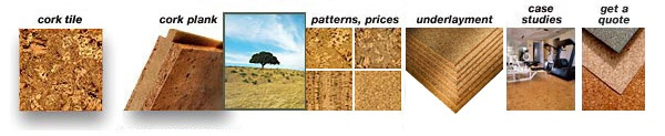 (800) 344-CORK (2675)       Cork flooring planks and tiles, cork underlayment sheets and rolls, delivered nationwide.  Premium European cork flooring and underlayment for commercial and  residential applications, with time-critical jobsite delivery.