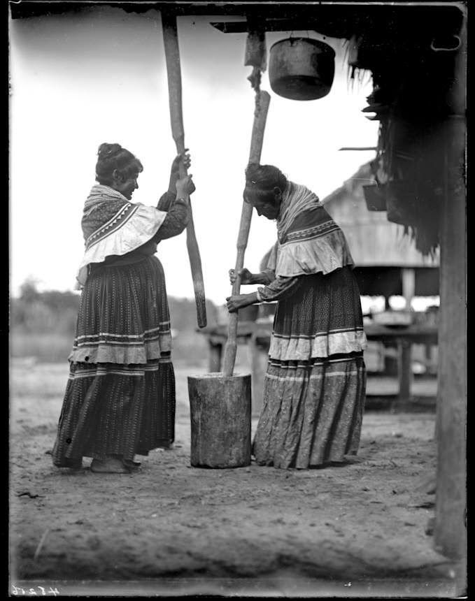 Indian Pictures Historic Photographs of Seminole Indian