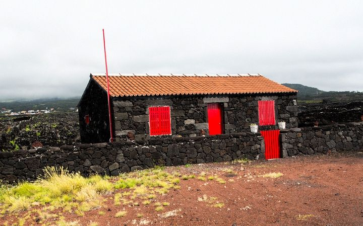 SPECIAL VINEIARDS OF PICO ISLAND