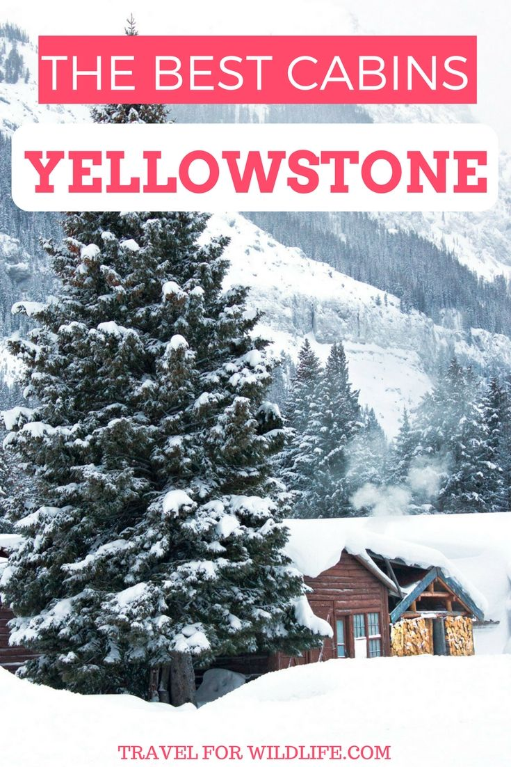 If you're taking a dream trip to Yellowstone then why not stay in your dream cabin? These are our favorite 11 cabins in Yellowstone you can rent for your next vacation. #Yellowstone #cabin