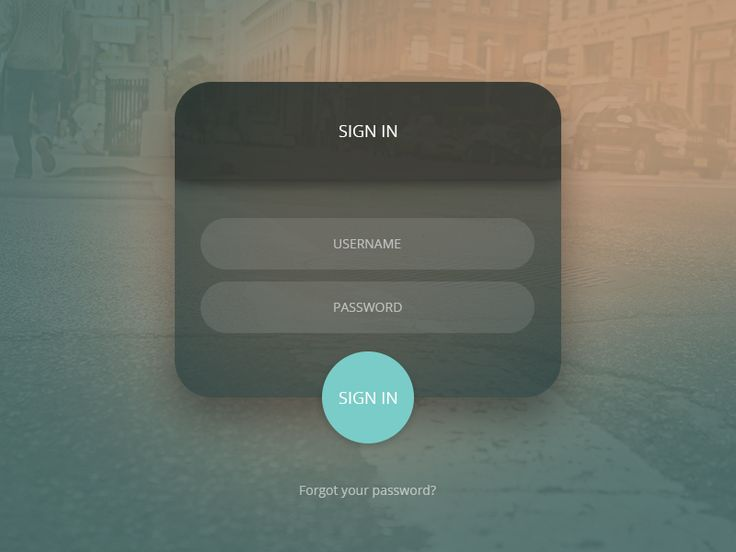 Login Form  by Andrei Velicu