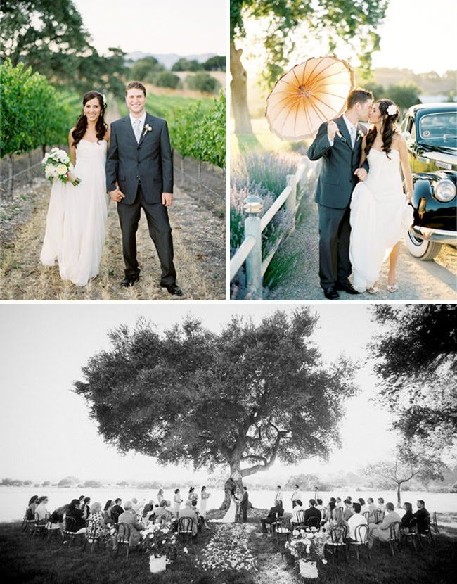 small intimate weddings southern california%0A vineyard wedding