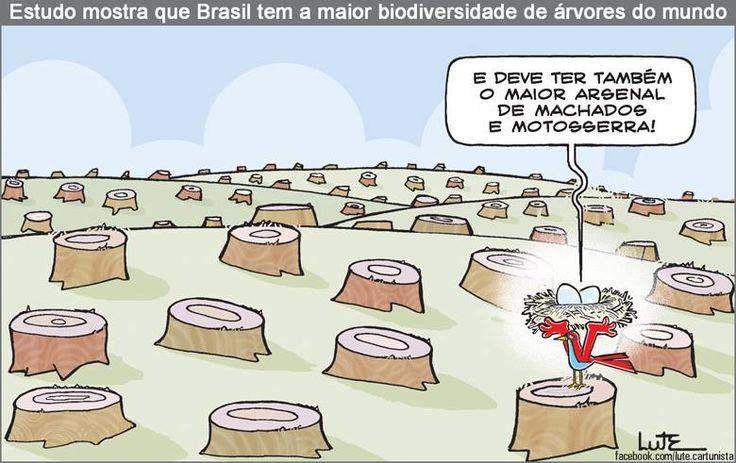 Charge do Lute sobre biodiversidade brasileira (24/04/2017) #Charge #Biodiversidade #Verde #Meio #Ambiente #MeioAmbiente #Arvores #Arvore #Brasil #Devastação #Degradação #Corte #HojeEmDia