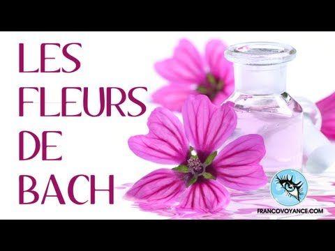 """Conférence """"Les Fleurs de Bach"""" par Brunok"""