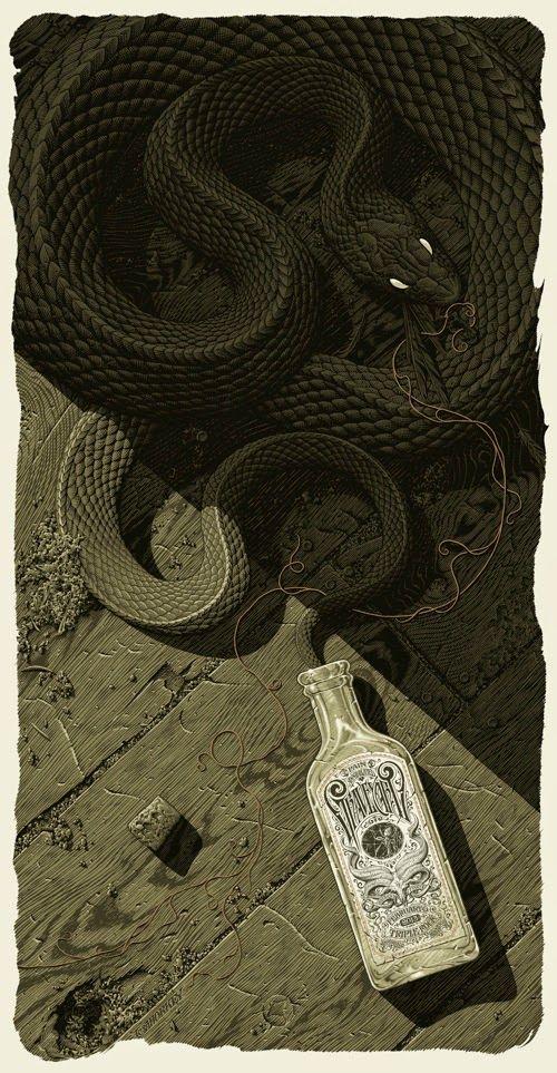 Les albums de Céline E.: La danse du serpent - Opus 3