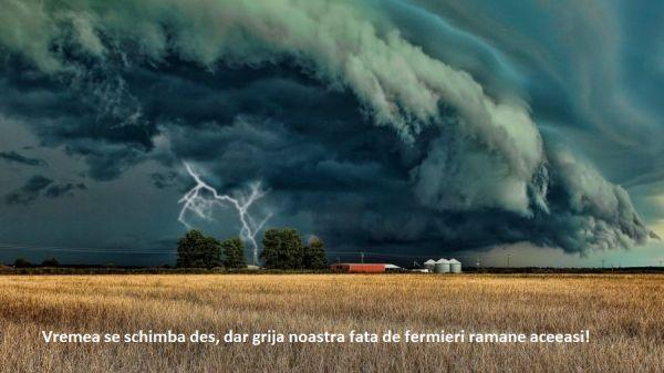 furtuna pe camp