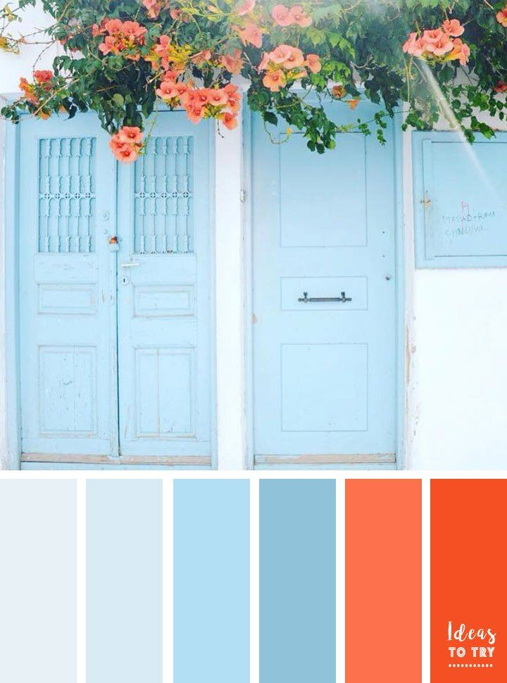 Colour palette , Blue door and coral flower color palette,blue and coral color palette,summer color ideas
