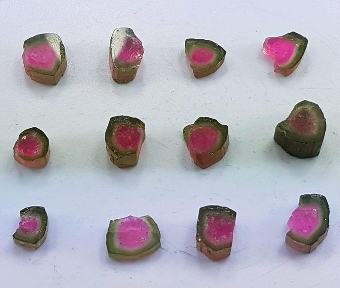 Gepolijste watermeloen toermalijn plakjes Lot - 5 tot en met 10 mm - 56 cts (12)  Presentatie van hier prachtige zeer aantrekkelijke paar watermeloen toermalijn segmenten uit Paprok Afghanistan met geweldige kleur in de plakjes waardoor ze ideaal voor liefhebbers van de toermalijn. Deze segmenten kunnen worden gebruikt in zilver of goud te maken een aantrekkelijke ringen of Pendents.Topkwaliteit Poolse toermalijn segmentBehandeling: natuurlijkePlaats: Paprok mineAfghanistanTotale gewicht: 56…