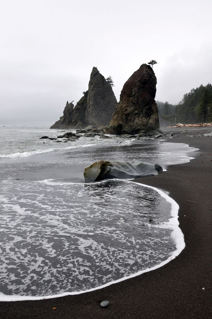 Pacific Ocean Coast, Rialto Beach, Olympic National Park, Washington State ,