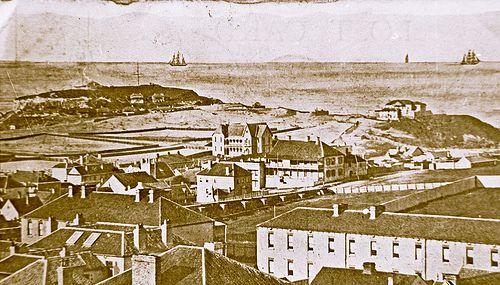 View of Newcastle East, NSW [1870]