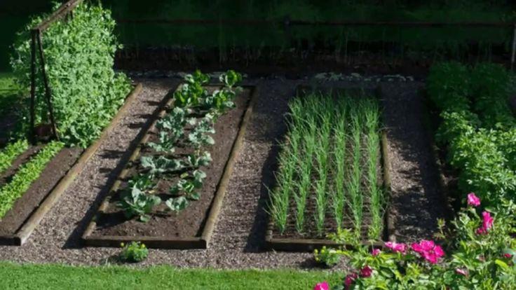 Оригинальные идеи как сделать красивые высокие грядки на даче или в огороде