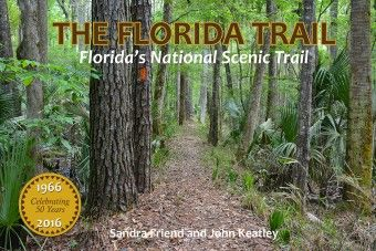Along the Baseline Road to Marshall Swamp section of the Florida Trail in Ocala, enjoy a swath of true urban wilderness, a mile-wide corridor edged on both sides by subdivisions and strip malls.