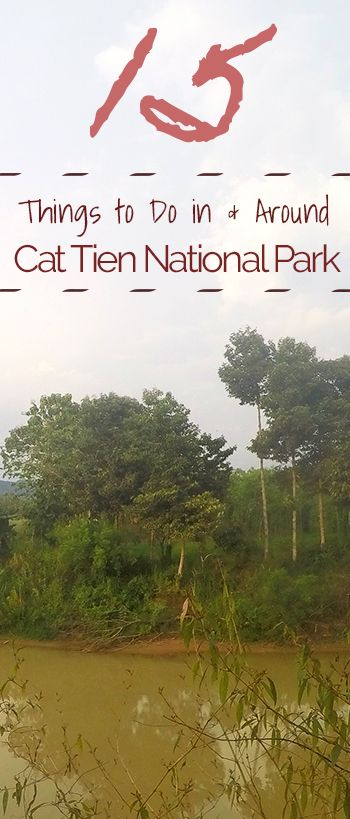Cat Tien National Park | One of Vietnam's last low lying National Parks, offers so many things to see to get you out of the city. Located only a couple hour drive outside Ho Chi Minh city. Stay in Cat Tien Nam and check out these 15 things to do!