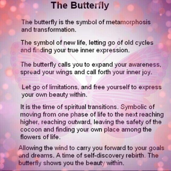Spiritual Butterfly Quotes: Best 25+ Butterfly Spirit Animal Ideas On Pinterest