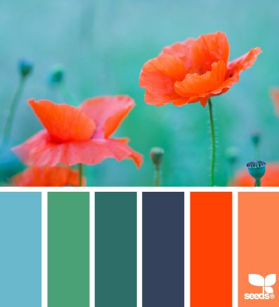 Love the teal/orange contrast. Good bathroom colors for the kids' bathroom. Bright and fun!