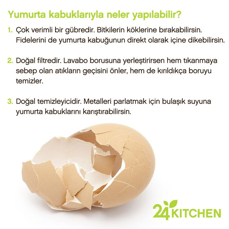 Yumurtaların kabuklarını atmaktan vazgeçmen için 3 sebep!