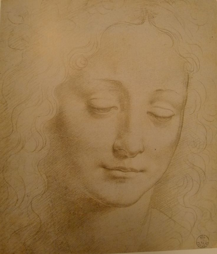 Giovanni Antonio Boltraffio, study of a head of a youth with an ivy wreath, 1494 (metalpoint on paper).