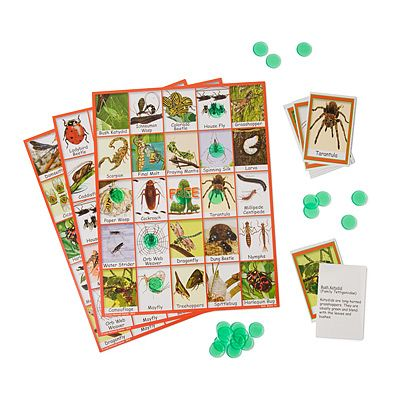 BUG BINGO: Bugs Bingo, For Kids, Education Games, Educational Games, Parties Ideas, Kiddie Science, Children Education, Kids Gifts, Uncommongood