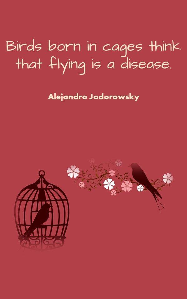 Alejandro Jodorowsky Philosophical Quotes Philosophy Quotes Philosophical Quotes About Life