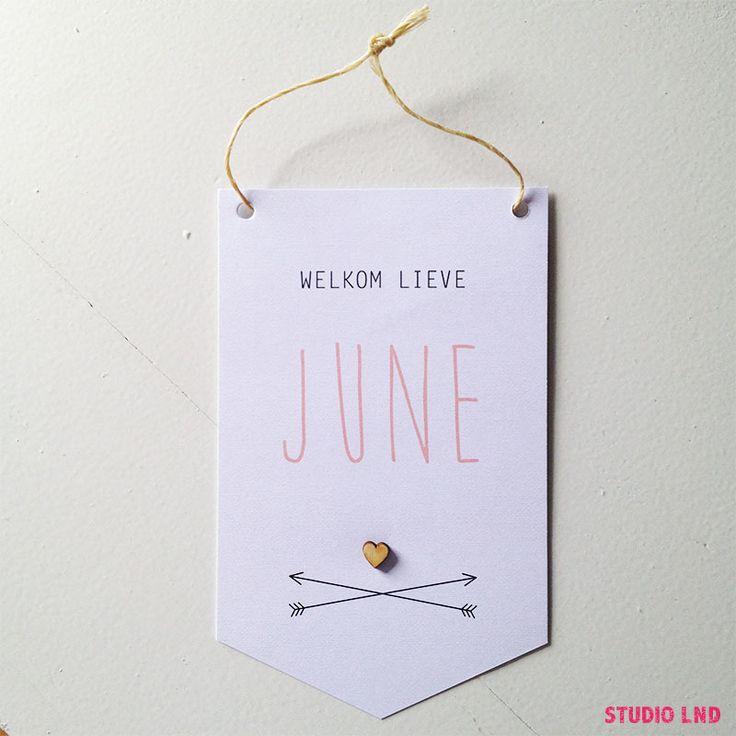Geboortekaartje June 22/03/2016