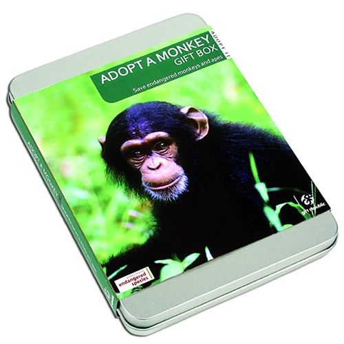 Monkey Adoption - Adopt a Monkey Gift Box  from Personalised Gifts Shop - ONLY £19.99