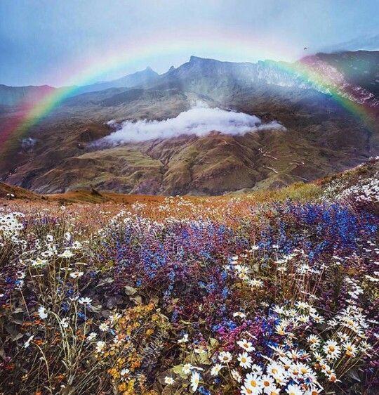Rainbow. No beginning no end.