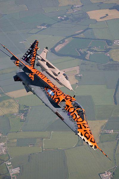 Jaguars, 6 Squadron